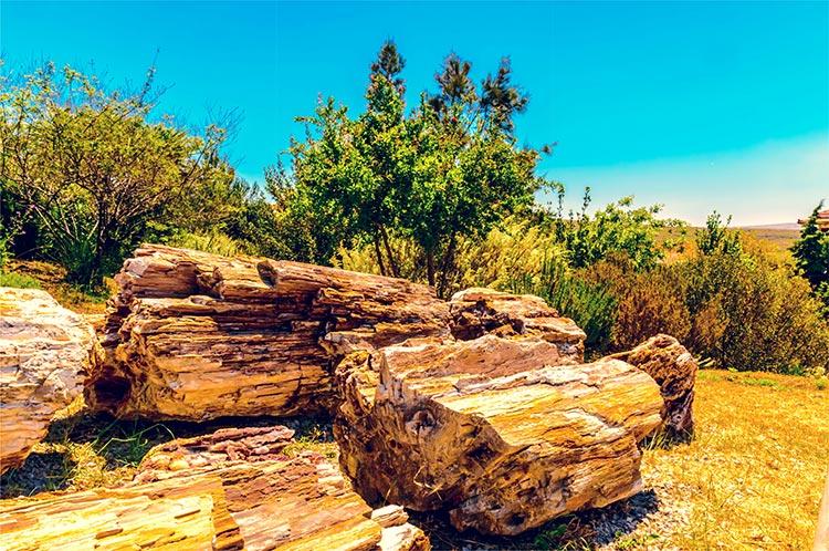 Ραντεβού με βράχους που χρησιμοποιούν απολιθώματα